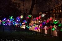 Light Festival 03